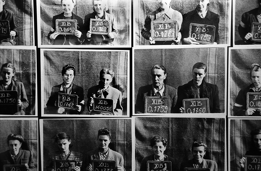 Prisoner of war identification photos taken by the Nazis after the Warsaw capitulation. Warsaw Uprising Museum.