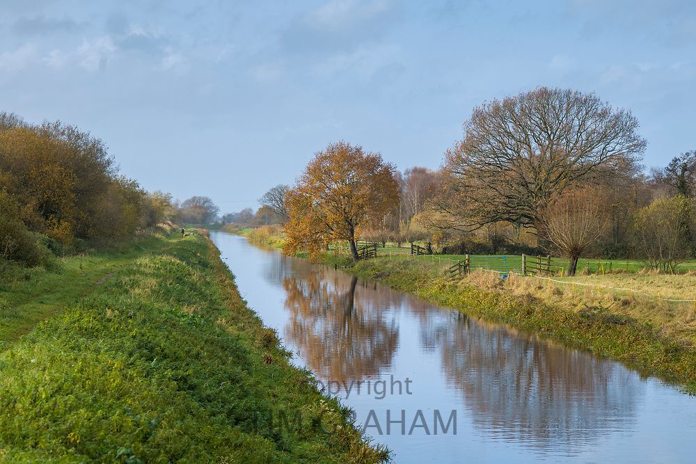 Tranquil scene along water channel at Avalon Marshes in the Somerset Levels, UK