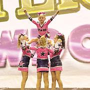 1077_SS Stars - Mini Level 1 Stunt Group