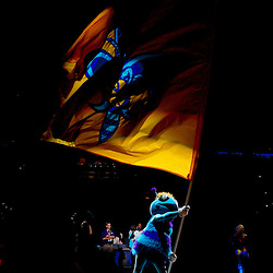 Mar 31, 2010; New Orleans, LA, USA; New Orleans Hornets mascot Hugo waves a team flag prior to tip off of a game against the Washington Wizards at the New Orleans Arena. Mandatory Credit: Derick E. Hingle-US PRESSWIRE