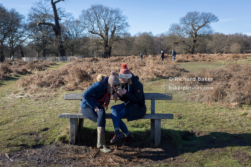 Two young women both look at a smartphone while sitting on a bench in a cold Richmond Park, on 3rd February 2019, in London, England.