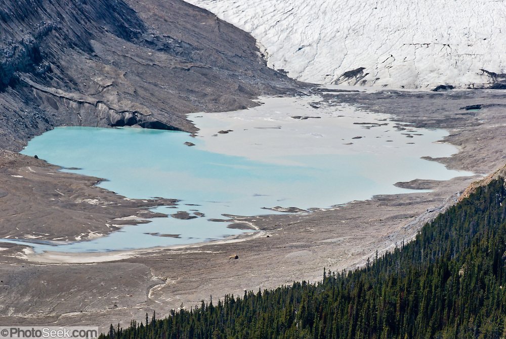 From Parker Ridge viewpoint, see Saskatchewan Glacier melt into a blue-green lake, in Banff National Park, Alberta, Canada. This is part of the big Canadian Rocky Mountain Parks World Heritage Site declared by UNESCO in 1984.
