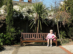 © Licensed to London News Pictures. 07/04/2015. London, UK. A woman relaxes with her dog on a bench in the sunshine and warm spring weather in Holland Park in west London this morning. Photo credit : Vickie Flores/LNP