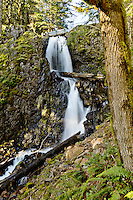 Lower Shellburg Falls