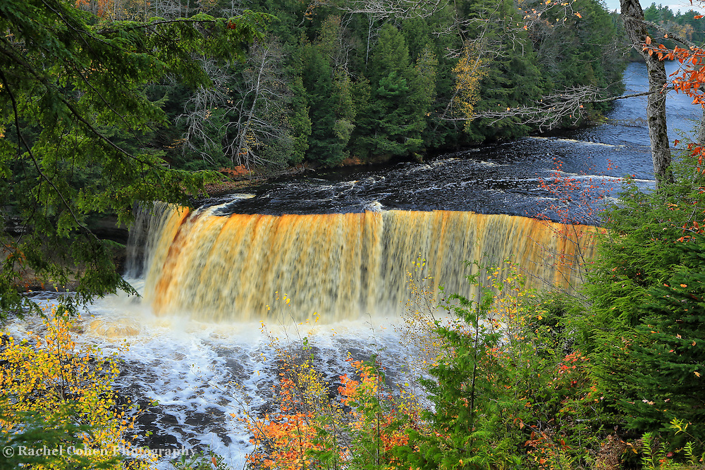 &quot;Farewell to Fall&quot;<br />