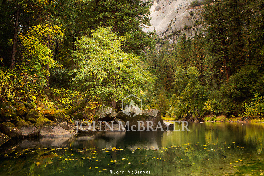 A slow breeze pushes leaves upstream toward the camera in the calm and cool autumn air in Yosemite.  © John McBrayer 2014