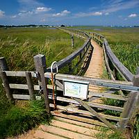 National Trust, Newtown, Nature Reserver, creek, walkway, bird sanctuary, boats, yachts, moorings, Isle of Wight, England, UK,