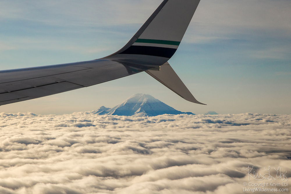 The wing of a Boeing 737 frames Mount Rainier and Mount Adams, the two tallest mountains in Washington state, which rise above a thick blanket of cumulus clouds.