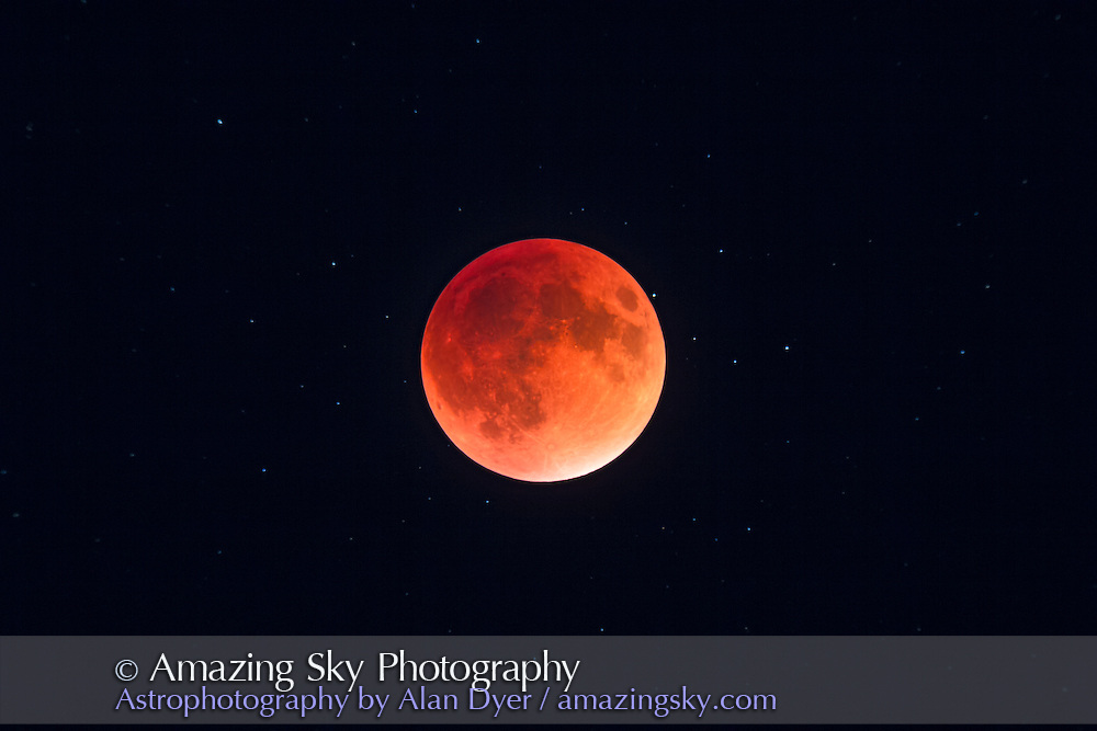 The total eclipse of the Moon of September 27, 2015, in closeup through a telescope, at mid-totality with the Moon at its darkest and deepest into the umbral shadow, in a long exposure to bring out the stars surrounding the dark red moon. This was also the Harvest Moon for 2015 and was the perigee Full Moon, the closest Full Moon of 2015. <br /> <br /> This is a single exposure taken through the TMB 92mm refractor at f/5.5 for 500 mm focal length using the Canon 60Da at ISO 400 for 8 seconds, the longest I shot during totality. The telescope was on the SkyWatcher HEQ5 mount tracking at the lunar rate.
