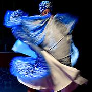 Latest DANCE images uploaded