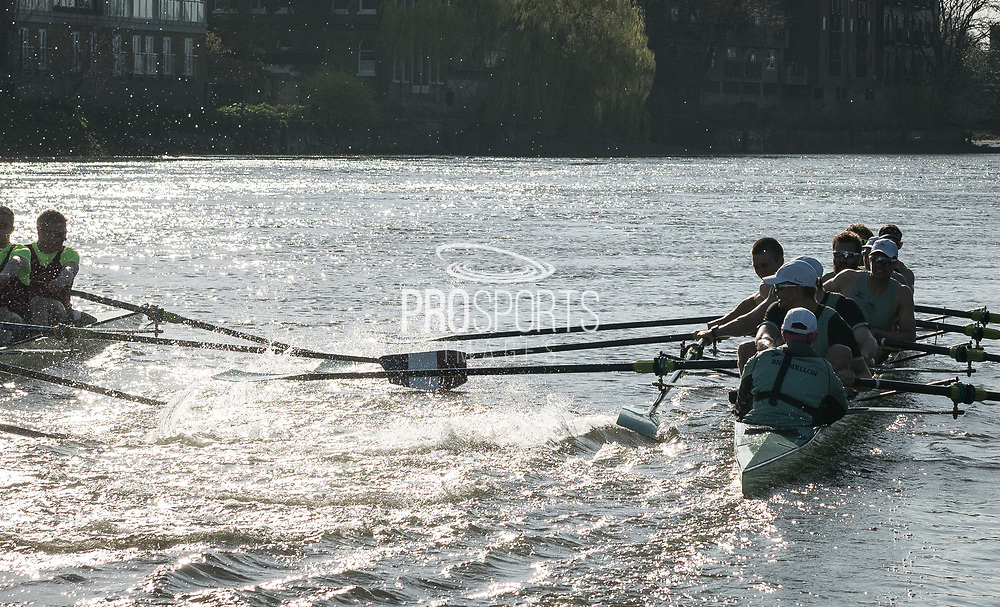 24 March 2019. Boat Race Fixture.  CUBC vs Oxford Brookes.<br /> <br /> As preparation for the The Boat Races, Oxford and Cambridge clubs participate in a number of Fixtures against other clubs, rowing the same Tideway course as used for the Boat Race.<br /> <br /> CUBC Crew List (Light Blue shirts):-<br /> Stroke: Natan Wegrzycki-Szymczyk, 7: Freddie Davidson, 6: Sam Hookway, 5: Callum Sullivan, 4: Dara Alizadeh, 3: Grant Bitler, 2: James Cracknell, Bow: Dave Bell, Cox: Matthew Holland