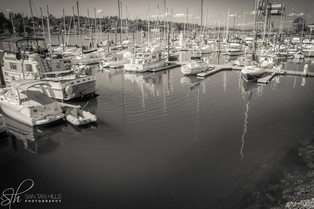 Boats docked at an Olympia Marina - WA