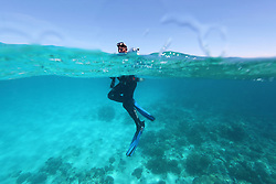 Film-maker and naturalist Richard Costin surfaces from scuba diving at the Rowley Shoals