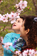 young boy admires the Almond Blossoms