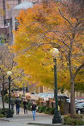 United States, Washington, Bellevu, people walking through downtown in fall