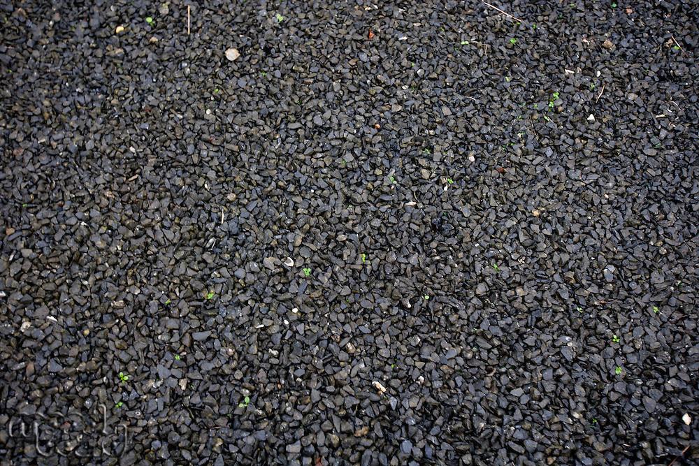Black wet gravel
