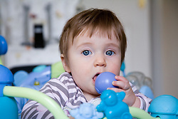 Portrait of a baby chewing a ball,
