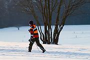 Skilangläufer, Schnee, Winter, Harz, Niedersachsen, Deutschland | cross country skiing track, forest,  snow, winter, Harz, Lower Saxony, Germany