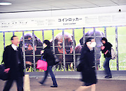 Shinjuku station is the busiest train station in Tokyo and is surrounded by extensive shopping arcades. Also there are hundreds of coin lockers many of which are decorated with animals.