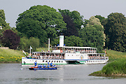 Pillnitz an der Elbe, Schaufelraddampfer, Dresden, Sachsen, Deutschland. .Pillnitz, river Elbe, paddle steamer, Dresden, Germany