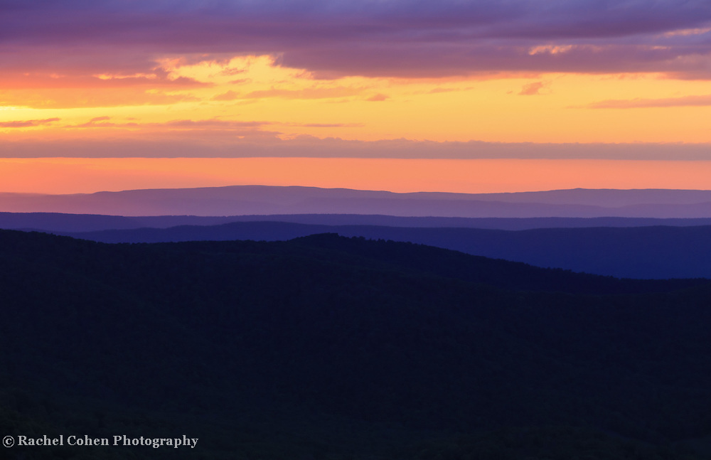 &quot;The Colors of Silence&quot;<br />