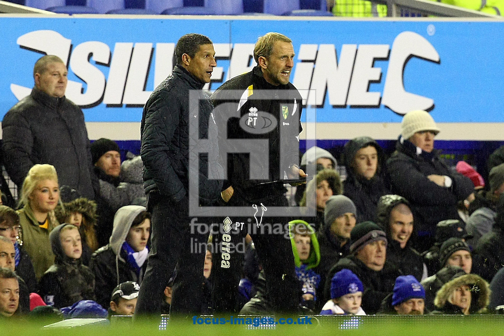 Picture by Paul Chesterton/Focus Images Ltd +44 7904 640267.24/11/2012.Norwich First Team Coach Paul Trollope and Norwich Manager Chris Hughton during the Barclays Premier League match at Goodison Park, Liverpool.