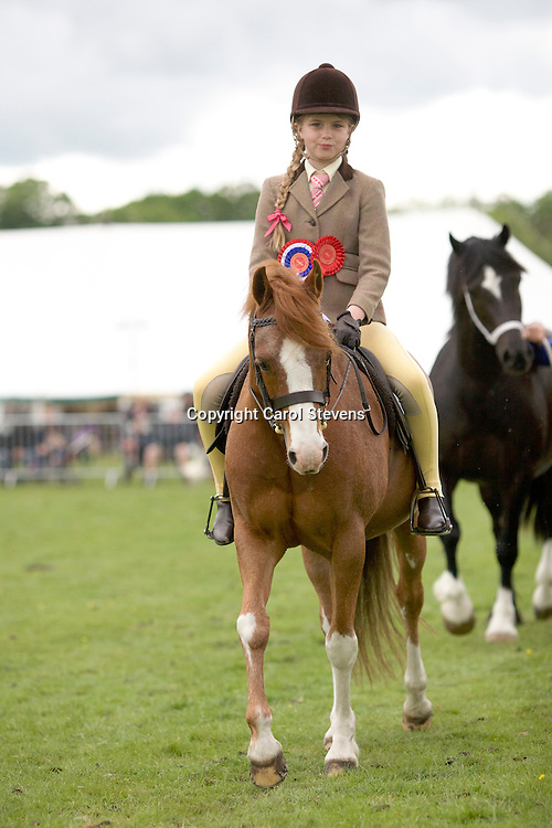Otley Show 2016  Around the Showground