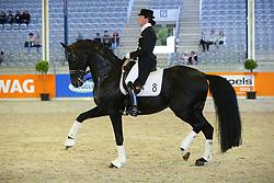 Reiten, Pferdesport, Schaubild, Donnerhall<br /> Aachen - Europameisterschaften 2015<br /> Zuchttag<br /> © www.sportfotos-lafrentz.de/Stefan Lafrentz