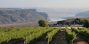 Cave B Winery near Quincy, Ancient Lakes AVA, central Washington