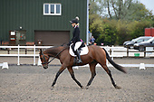 50 - 12th Oct - RC Perpetual Show Dressage