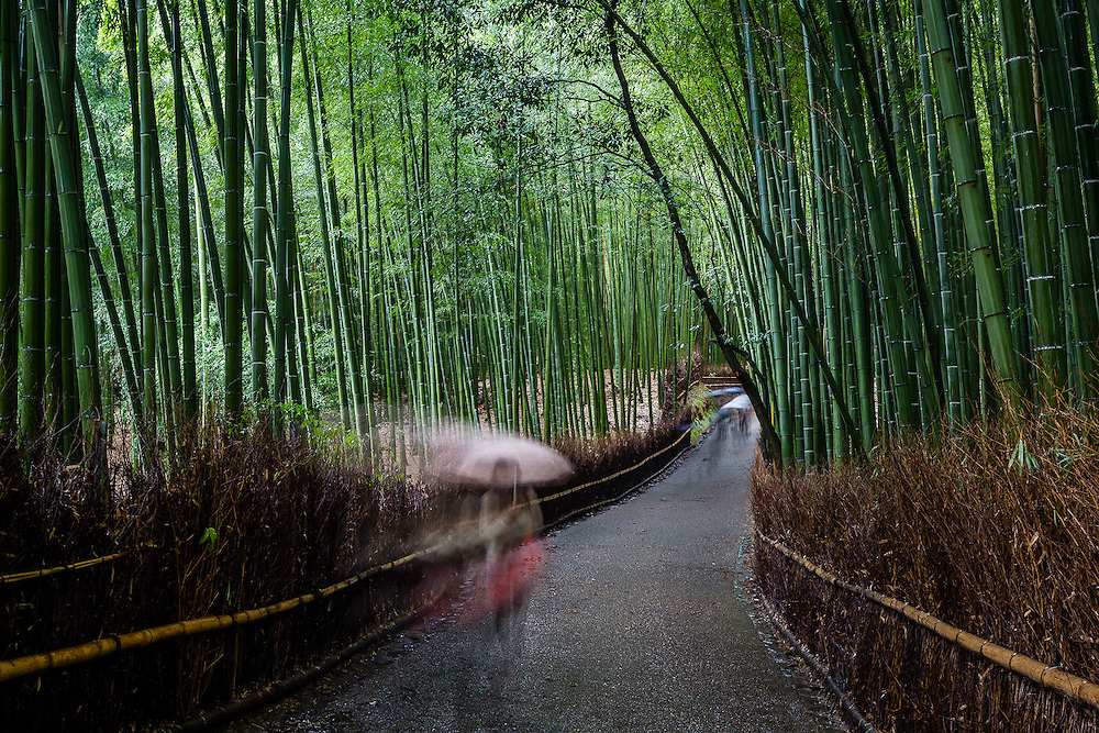 Arashiyama, on the outskirts of Kyoto, is known, among other things, by a scenic path cutting through a bamboo grove, that leads to Tenryuji temple.