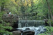 Gentleman feeding ducks near a waterfall