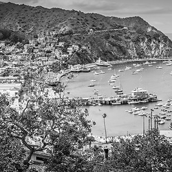 Avalon California high resolution panorama photo in black and white with Avalon Bay, Catalina Casino, Catalina Pier, and city of Avalon