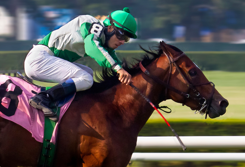 Eden is Burning breaks his maiden ace of the Belmont grass with Eddie Castro aboard.