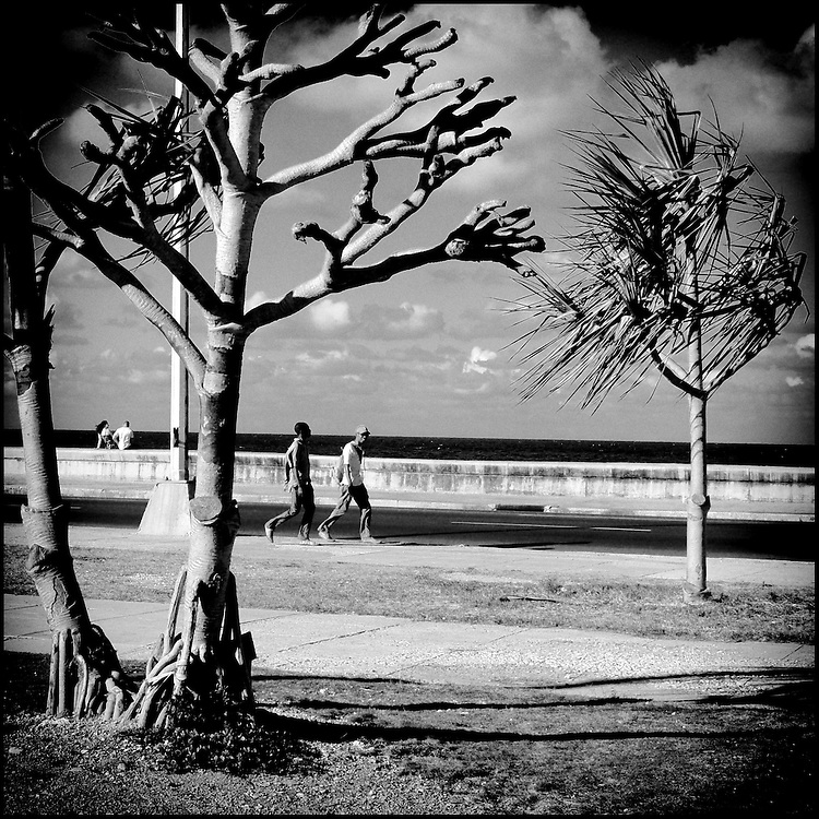 Serie: DIARIOS VISUALES / VISUAL DIARIES<br /> Photography by Aaron Sosa<br /> Cuba 2008<br /> (Copyright &copy; Aaron Sosa)