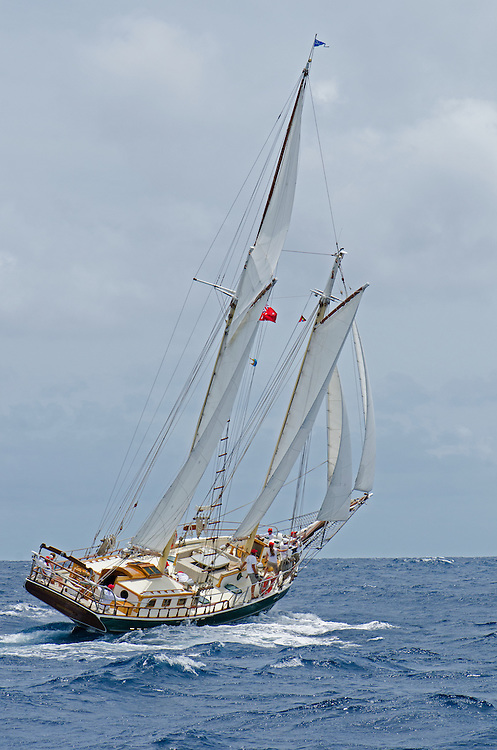 WINDJAMMER. Back in the 60s, classic yachts, which were gathered in English Harbour Antigua, had begun chartering and the captains and crews challenged each other to a race down to Guadeloupe and back to celebrate the end of the charter season. From this informal race, Antigua Race Week was formalised in 1967, and in those days all of the yachts were classics. As the years grew on, the classic yachts were slowly outnumbered but the faster sleeker modern racing yachts and 24 years later the Classic Class had diminished to a few boats and was abandoned in 1987. However this same year seven classic yachts turned out and were placed in Cruising Class 3 with the bare boats. The class was so unmatched that it was downright dangerous, so Captain Uli Pruesse hosted a meeting onboard Aschanti of Saba with several classic skippers and in 1988 the Antigua Classic Yacht Regatta was born, with seven boats.<br />