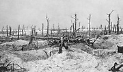 World War I 1914-1918: Woodland at Mesnil-les-Haut, France, reduced to skeletons of trees by gunfire. From 'Le Flambeau', Paris, September 1915. Bombardment Destruction