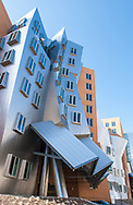 MIT,  Ray and Maria Stata Center Building, Architectural detail, Massachusetts Institute of Technology,  Building 32, architect Frank Gehry