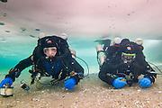 Deux plongeurs en exploration sous la glace du Québec, Canada.   Two divers exploring under the ice in Québec, Canada.