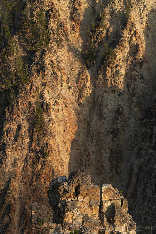 Osprey nest perched precariously on knife edge cliff in the Grand Canyon of the Yellowstone, Yellowstone National Park