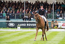 Townend Olivier, (GBR), Armada<br /> Land Rover Burghley Horse Trials - Stamford 2015<br /> © Hippo Foto - Jon Stroud<br /> 04/09/15