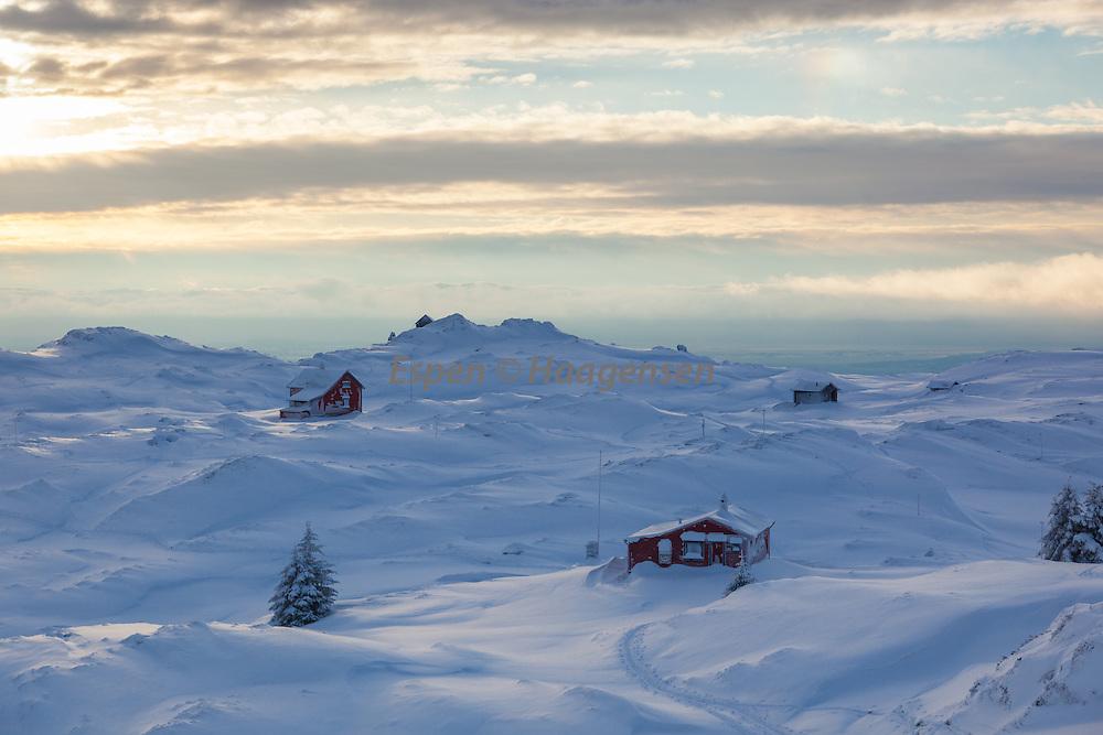 Skiing Vidden