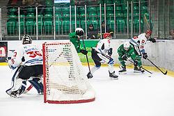 Simsic Nik of HK SZ Olimpija and Miha Brus of HDD Sij Acroni Jesenice during ice hockey match between HK SZ Olimpija and HDD Sij Acroni Jesenice in 1. Round of Playoff  in Alps Hockey League 2019/20, on February 13, 2020, in Hala Tivoli, Ljubljana, Slovenia. Photo By Grega Valancic / Sportida