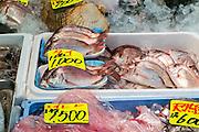 Fish for sale, Tsukiji fish market, Tokyo, Japan