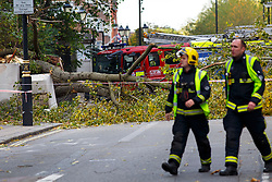© Licensed to London News Pictures. 21/10/2014. LONDON, UK. A woman has been killed by a tree and wall which were blown down by high winds opposite Knightsbridge Barracks in west London. Photo credit : Tolga Akmen/LNP© Licensed to London News Pictures. 21/10/2014. LONDON, UK. A woman has been killed by a tree and wall which were blown down by high winds opposite Knightsbridge Barracks in west London. Photo credit : Tolga Akmen/LNP
