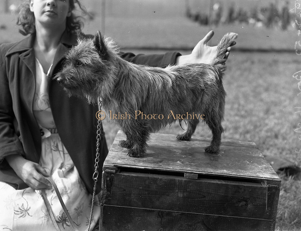 19/07/1952<br />