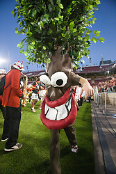 September 18, 2010; Stanford, CA, USA; The Stanford Cardinal mascot performs with the band before the game against the Wake Forest Demon Deacons at Stanford Stadium. Stanford defeated Wake Forest 68-24.