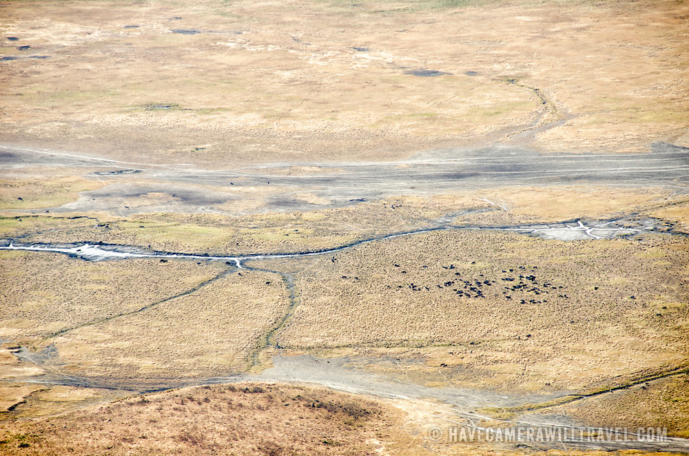 An elevated view of some of the crater floor at Ngorongoro Crater in the Ngorongoro Conservation Area, part of Tanzania's northern circuit of national parks and nature preserves.