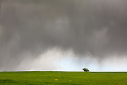 Cultivated fields with dark storm clouds. Lleida province. Catalonia. Spain.