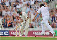 Steve Harmison of England celebrates after bowling Hashim Amla during the fourth Test at the Oval on the 7th of August 2008..England v South Africa .Photo by Philip Brown.www.philipbrownphotos.com